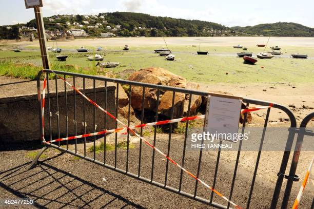 Photo taken on August 9 2009 in SaintMichelenGreve western France shows a part of the coastline that has been declared offlimits after a horse...