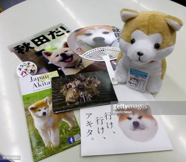 Photo taken on Feb 28 shows an Akita dog doll and postcards featuring the Japanese dog The Akita prefectural government will be gifting them...