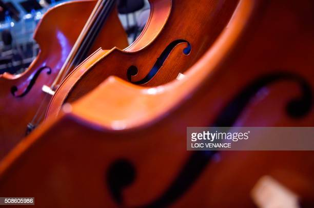 Photo taken on February 5 2016 shows cellos of the Ural Philharmonic Orchestra during the 'Folle Journee de Nantes' classical music festival in...
