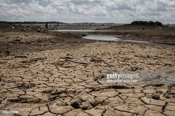 A photo taken on February 7 2016 shows the fast drying catchment area of the Umzingwani dam in Matabeleland Southwestern Zimbabwe Zimbabwe's...