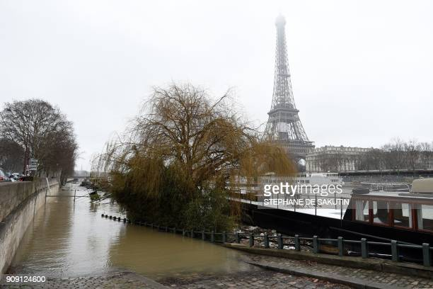 A photo taken on January 23 2018 shows flooded banks as the river Seine level has risen in front of the Eiffel tower in Paris / AFP PHOTO / STEPHANE...