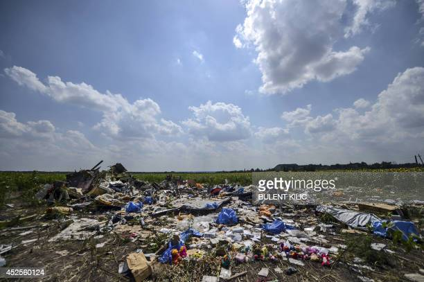 A photo taken on July 23 2014 shows the crash site of the downed Malaysia Airlines flight MH17 in a field near the village of Grabove in the Donetsk...