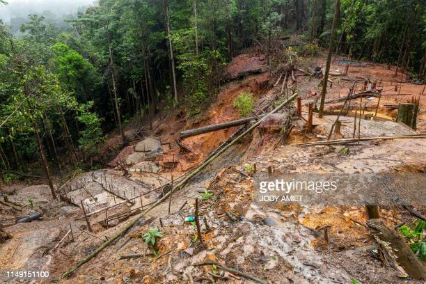 Photo taken on June 10, 2019 shows an illegal gold panning site near the village of Cacao, 60 kms from the capital Cayenne, French overseas...