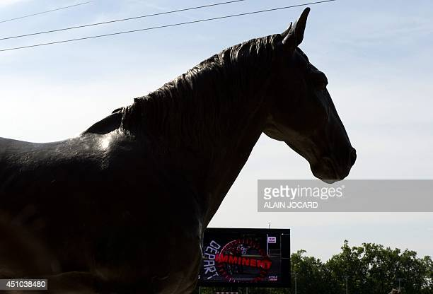 Photo taken on June 22 2014 shows the newly unveiled bronze statue of French trotter Ourasi fourtime winner of the Prix d'Amerique at the Vincennes...