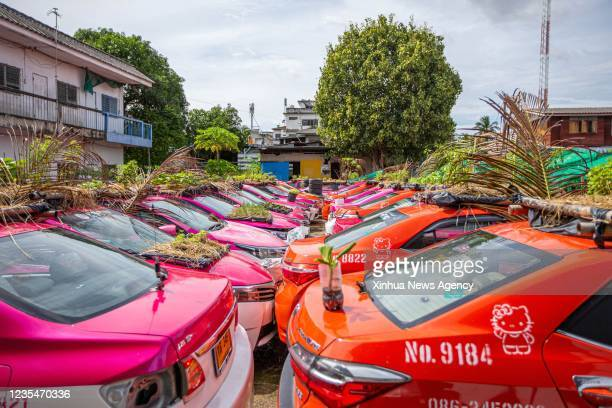 Photo taken on Sept. 24, 2021 shows taxis used to grow vegetables at a parking lot in Bankok, Thailand. At a parking lot on the outskirts of Bangkok,...