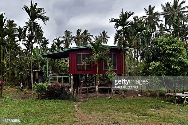 A photo taken on September 4 2014 shows a view of a painted wooden house near the town of Malalaua in the jungle of Papua New Guinea AFP PHOTO / ARIS...