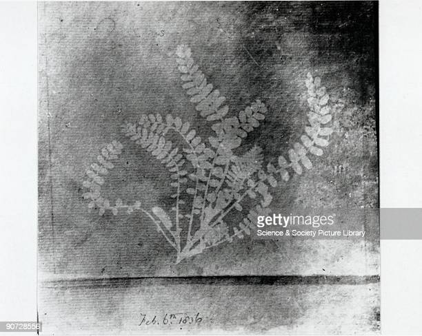 Photogenic drawing by William Henry Fox Talbot Photogenic drawing was Fox Talbot's name for the results of his first cameraless photographic process...