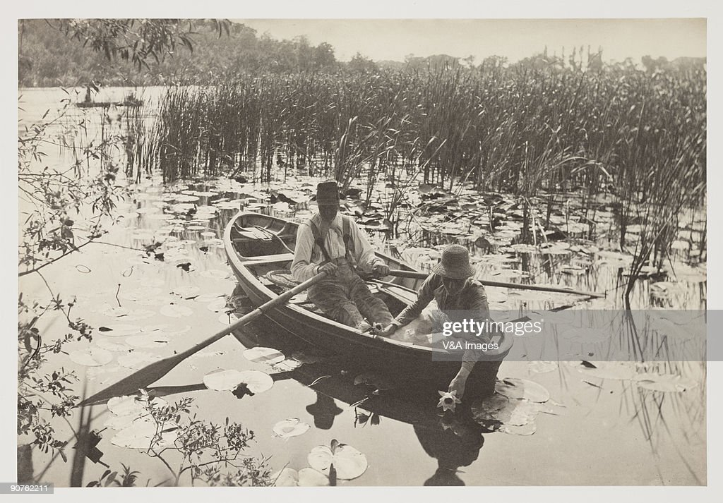 Gathering Water Lilies, 1887. : News Photo
