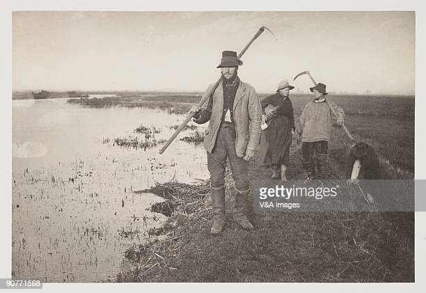 Photograph by Peter Henry Emerson showing reedcutters with their scythes