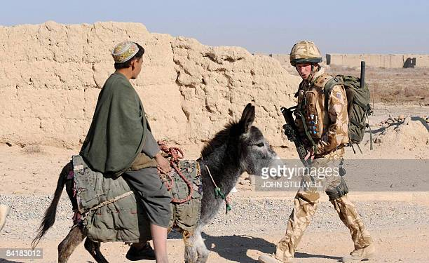 A photograph made available February 28 shows Britain's Prince Harry as he passes a donkey while on patrol through the deserted town of Garmisir...
