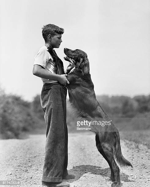 Photograph of a boy with an Irish Setter jumping up on his chest Model Alfred Lamar is wearing a white tshirt with a pair of baggy pants Ca 19501960