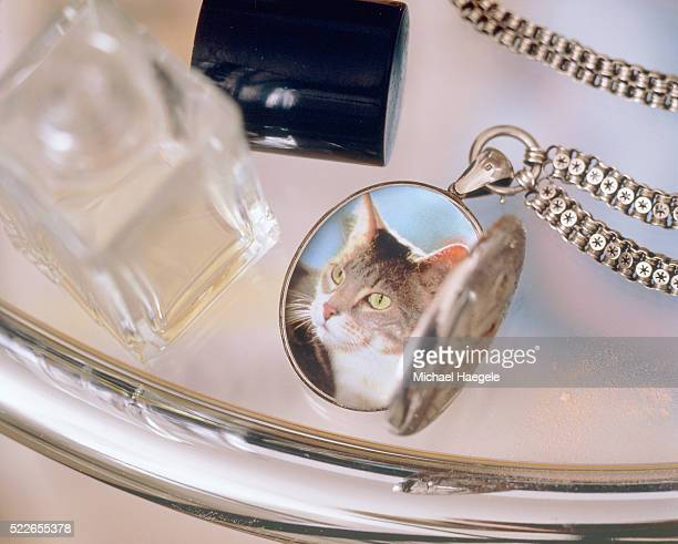 Photograph of a cat in a m?daillon on a table of glass