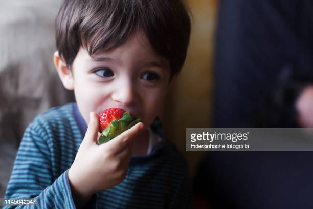 photograph of a child's expression eating a strawberry - comida e bebida imagens e fotografias de stock