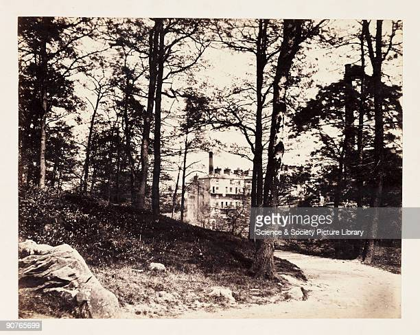 Photograph of a factory with its chimney clearly visible through the trees at the edge of a wood, by Samuel Smith. Smith was a successful timber...