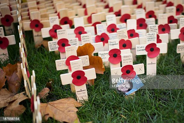 A photograph of a fallen soldier stands among the poppies outside Westminster Abbey ahead of the Remembrance Sunday service in central London on...
