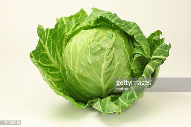 Photograph of a healthy green cabbage