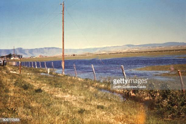 Photograph of a large pool of tailwater accumulated from an irrigation field posing a risk of becoming mosquito vector breeding ground in Wyoming...