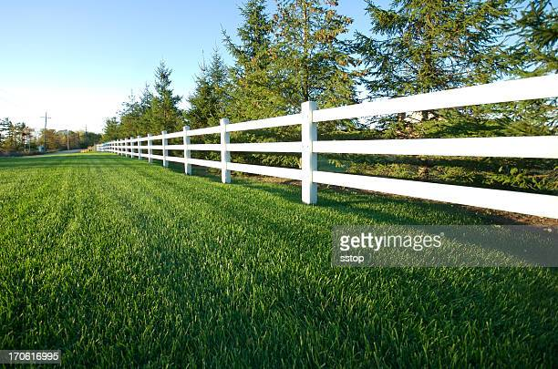 photograph of a picket white fence - hek stockfoto's en -beelden
