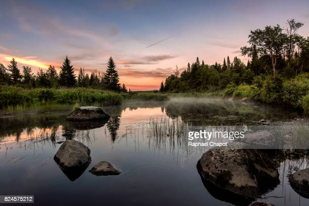 photograph of a river and pins forest in the mont megantic national park in quebec, canada during sunset - québec stock-fotos und bilder