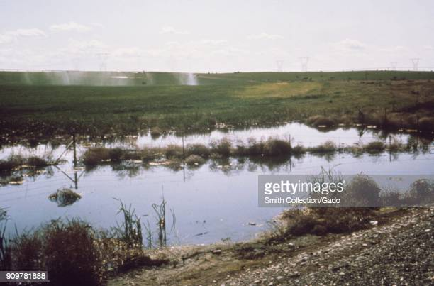 Photograph of a stagnant water pool by a roadside accumulated from irrigation water and sprinklers in the background grass field in Washington a site...