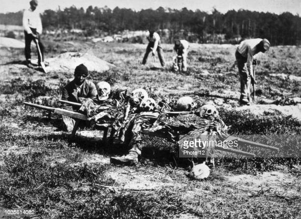 Photograph of an African American collecting the bones of soldiers killed during the Battle of Cold Harbour, Virginia. Dated 1865.
