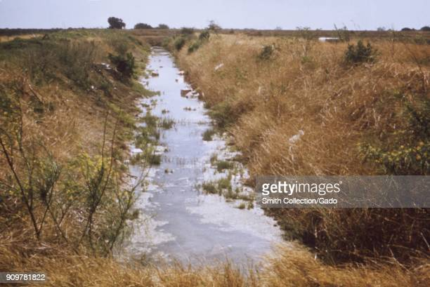 Photograph of an irrigation drainage ditch with a build up of trash vegetation and stagnant water in Texas a site relevant to the CDC investigation...