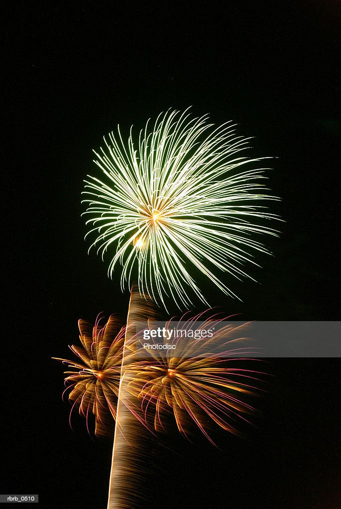 photograph of fireworks exploding through the night sky : Stockfoto