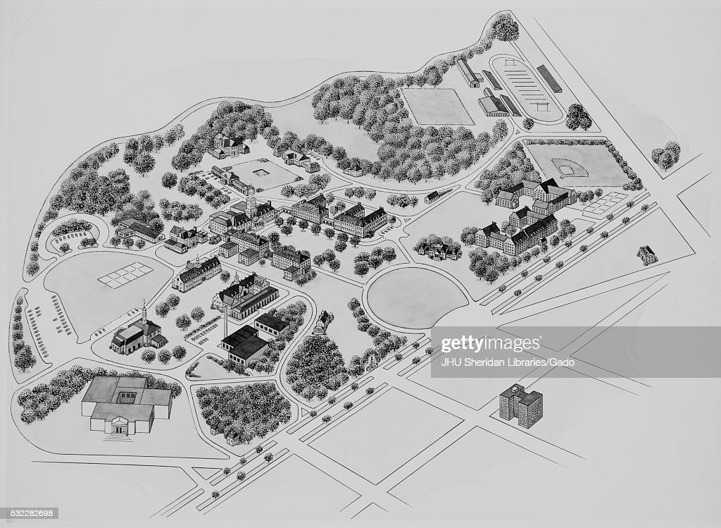 Photograph Of Map Drawing Of Johns Hopkins University Homewood