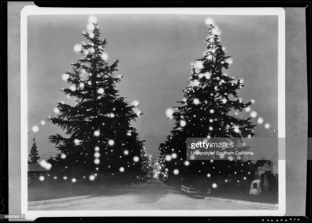 Photograph Of Photograph Of Christmas Tree Lane Altadena News