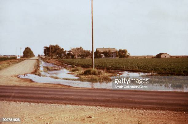 Photograph of runoff irrigation water from a field collected in a roadside ditch in Texas a site relevant for the CDC investigation of vectorborne...
