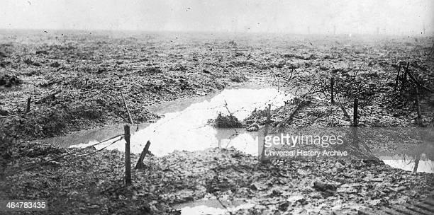 Photograph of the Battlefield of Passchendaele