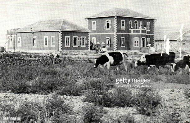 Photograph of the first houses in Degania Alef a kibbutz in Northern Israel Dated 1912