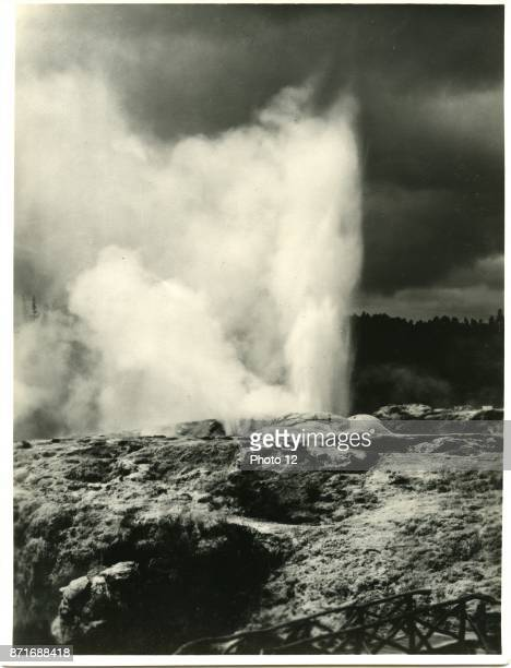 Photograph of the Pohutu Geyser in the Whakarewarewa Thermal Valley Rotorua Dated 1909