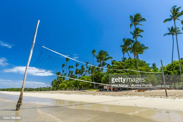 photograph of volleyball net in tropical beach on morro de sao paulo, south bahia state, brazil - beach volleyball stock pictures, royalty-free photos & images