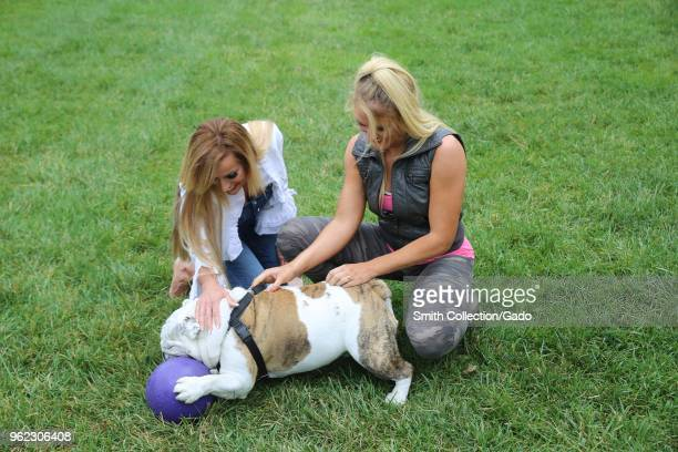 Photograph of WWE wrestlers Dana Warrior and Lacey Evans playing with the bulldog Chesty XIV official Marine Corps mascot during a tour of barracks...