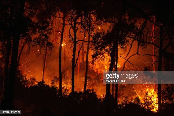 Photograph shows a forest burning as a massive wildfire engulfed a Mediterranean resort at the Marmaris district of Mugla, on August 1 2021. - At...
