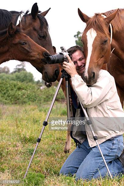 photographer and horses - karl lagerfield bildbanksfoton och bilder