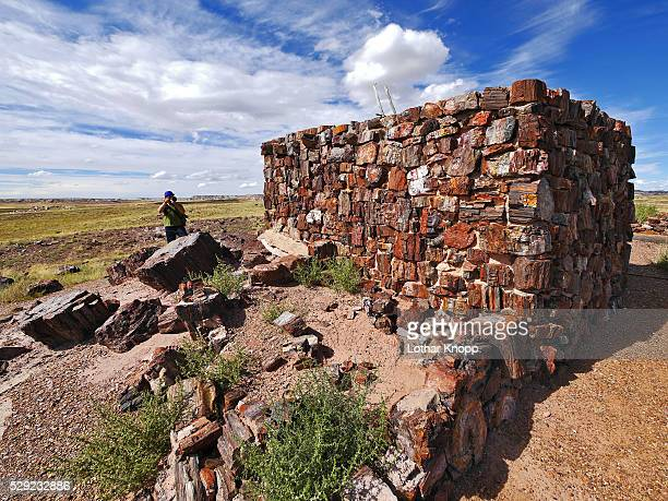 photographer at agate house pueblo, petrified forest national park - petrified wood stock pictures, royalty-free photos & images