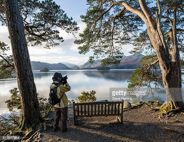 photographer at friar's crag, derwentwater, cumbria, uk. - keswick stock pictures, royalty-free photos & images