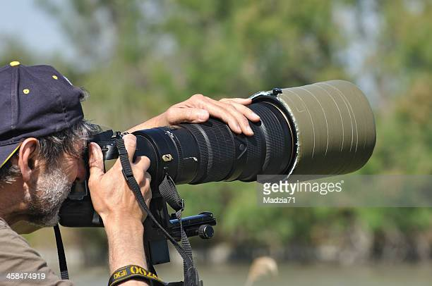 photographer at work - nikon stock pictures, royalty-free photos & images