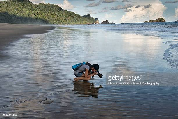 Photographer following baby turtle heading to sea