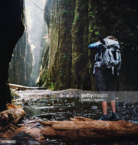 photographer hiking in narrow gorge - columbia river gorge stock pictures, royalty-free photos & images