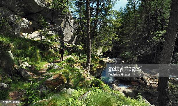photographer in the natural park of the high antrona valley, piedmont, north italy - valle foto e immagini stock