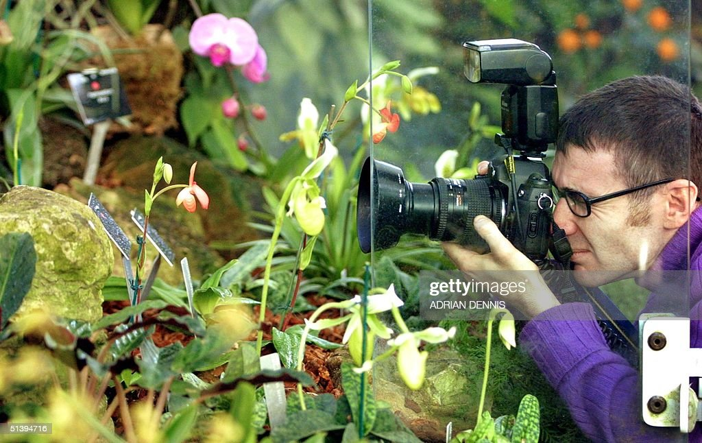 A photographer moves in for a close up picture of : News Photo