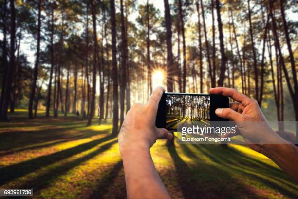 Photographer or traveller using a  smartphone taking a picture of camera in the nature for background