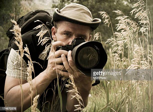 photographer - wildlife stock pictures, royalty-free photos & images