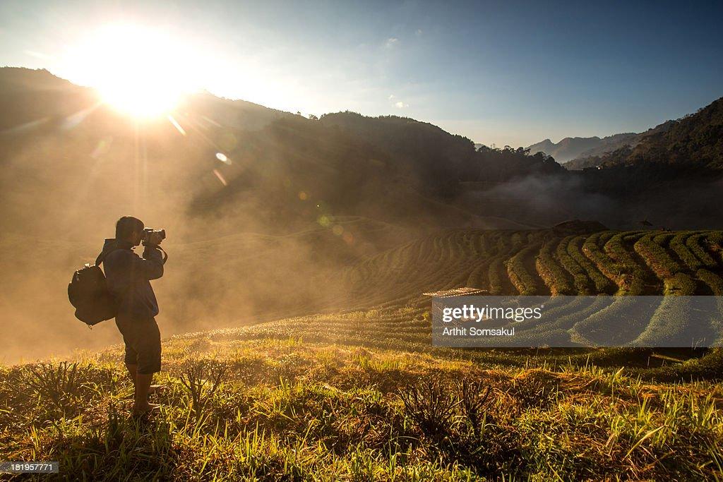 Photographer : Stock Photo