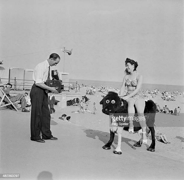 Photographer Roy Kirby takes a picture of Carmel Martin as she poses on a cartoonish stuffed cow on the beach at Ramsgate Kent 24th September 1949...