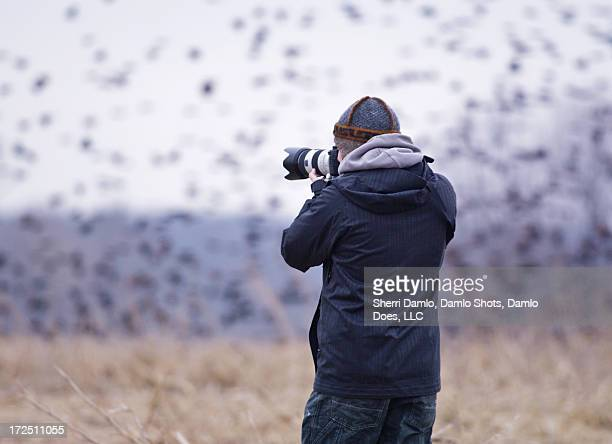 Photographer shooting red-wing blackbirds