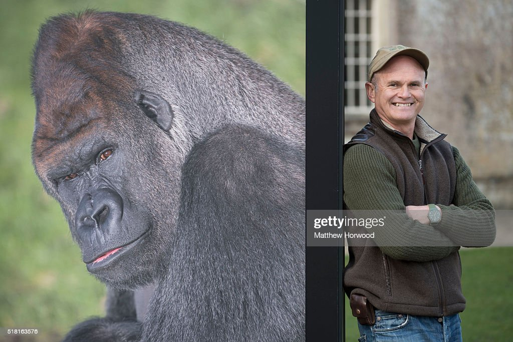 Photographer Simon King who created a number of images for an exhibition at Longleat House to celebrate LongleatÕs 50th anniversary on March 30, 2016 in Wiltshire, England. This year Longleat marks the 50th anniversary of its ground-breaking safari park. In 1966, the park, set in the grounds of the Wiltshire stately home, became the first of its kind to open outside of Africa.